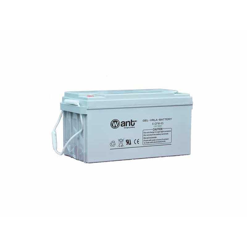 Batería de Gel 65AH 12V GFM Want Energia 34948