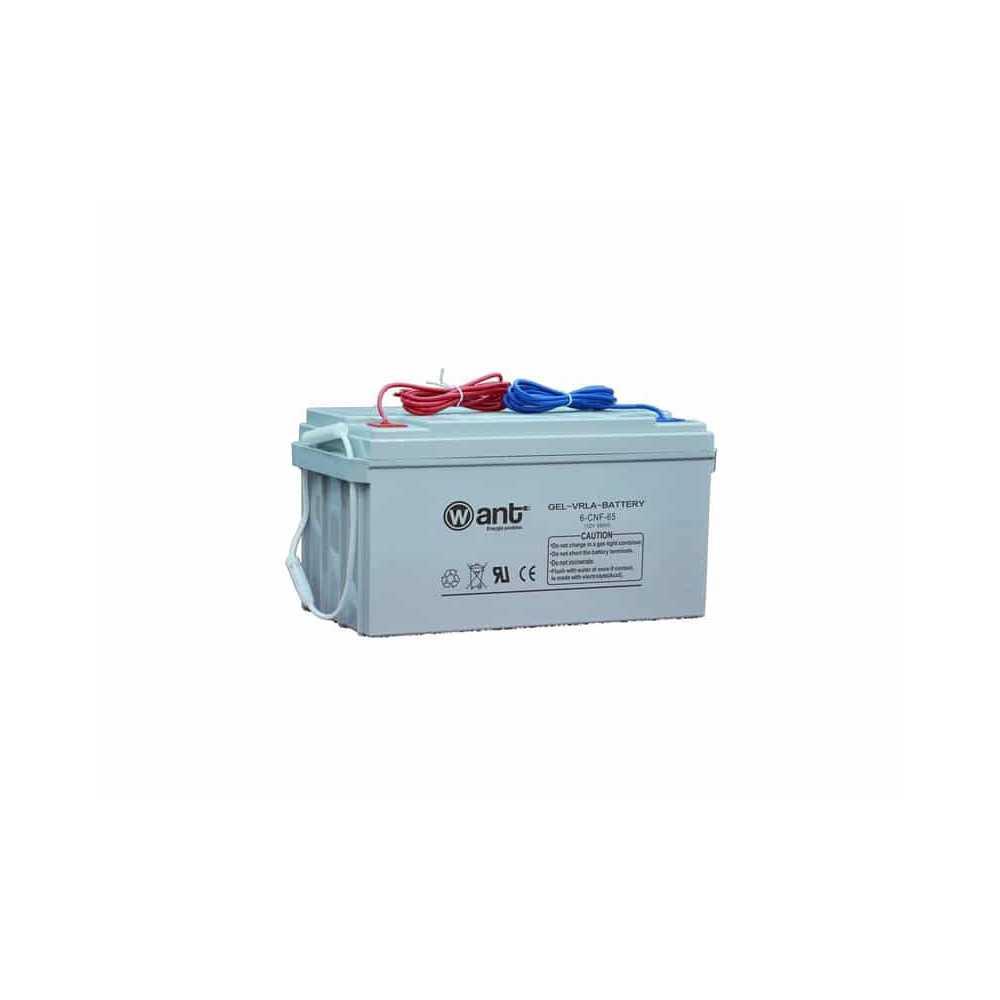 Batería de Gel 65AH 12V CNF Want Energia 34947